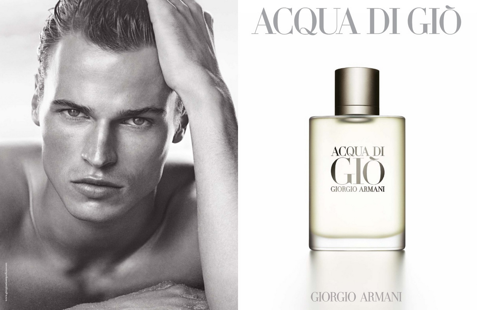 acqua di gio by giorgio armani for men edt 100 ml